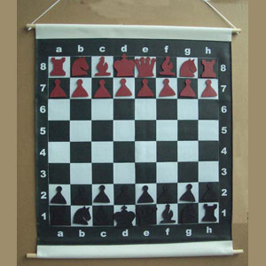 Slotted Chess Demo Board with Carry-Case