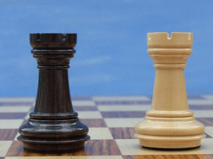 The Meghdoot Chess Set in Rosewood