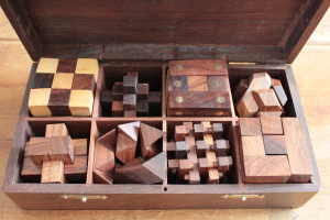Wooden Puzzle 8 in 1 in Solid Sheesham
