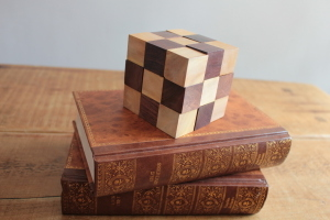 Wooden Puzzle - Snake Cube in Solid Sheesham