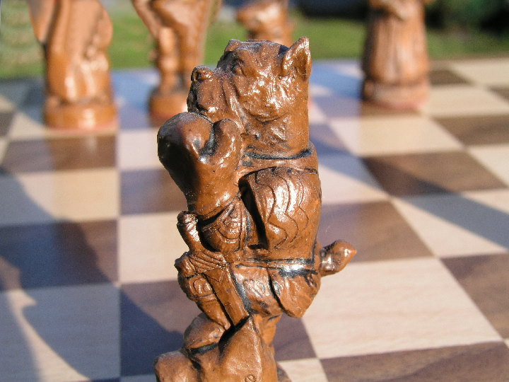 Mascott Chess Ltd - Cats and Dogs
